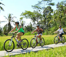 Bali Kintamani Cycling Tour
